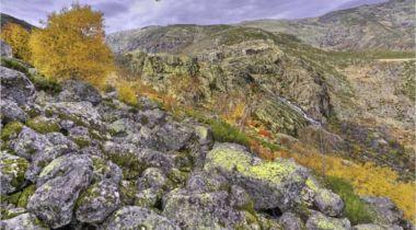 SOLANA DE ÁVILA-Subida laguna del Duque