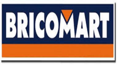 BRICOMART (SALAMANCA)