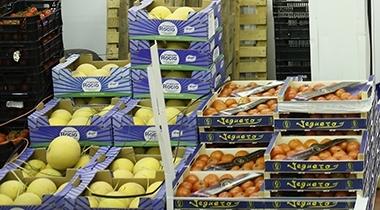 Frutas y verduras Cid, S.L.