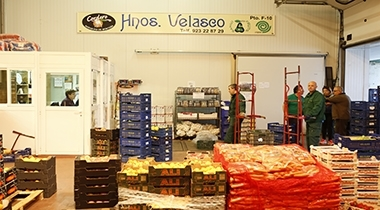 Frutas Hermanos Velasco, S.L.