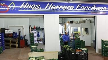 Herrero Escribano, C.B.