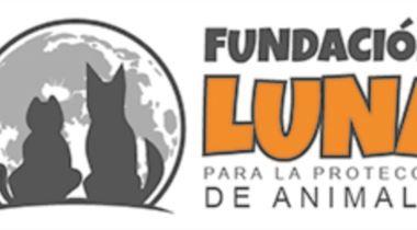 FUNDACIÓN LUNA